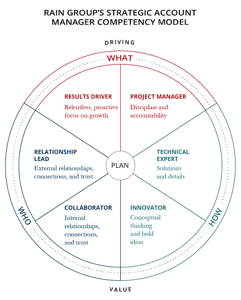 Rain Group's Strategic Account Manager Competency Model