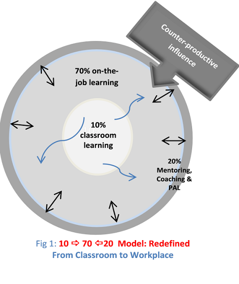70:20:10 Model Revisited: From Classroom to Workplace