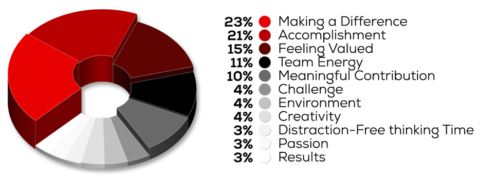 Motivations: 23% Making a Difference, 21% Accomplishment, 15% Feeling Valued, 11% Team Energy, 10% Meaningful Contribution, 4% Challenge, 4% Environment, 4% Creativity, 3% Distraction-Free thinking Time, 3% Passion, 3% Results