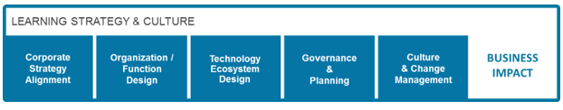 Learning Strategy & Culture: Corporate Strategy Alignment, Organization/Function Design, Technology Ecosystem Design, Governance & Planning, Culture & Change Management - Business Impact