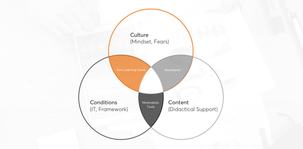 Culture (Mindset, Fears), Conditions (IT, Framework), Content (Didactical Support)